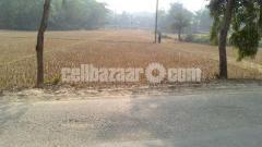 33 Decimal Industry Land at Sreepur Buss road