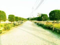 সুপরিকল্পিত প্লট কিনুন-(2.5)