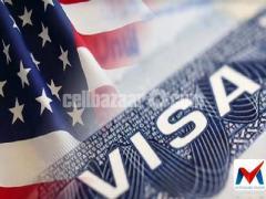 USA 5 YEARS MULTIPLE VISA