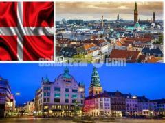Visa Processing for Denmark