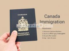 Study in Canada & PNP