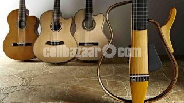 Learn Guitar from Professional Teacher - 1/3