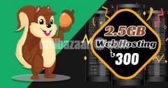 ৩০০ টাকায় ২.৫ জিবি Pure SSD হোস্টিং - IT Nut Hosting