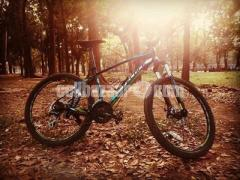 Cycle Veloce 603