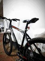 Raleigh Talus 2.0
