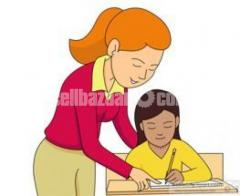 Female Home Tutor Wanted