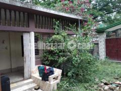 Ready house in Jamalpur main town for urgent sale
