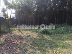 50 bigha land for sale at gazipur