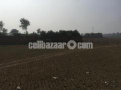 50 bigha land for sale at gazipur - Image 2/4