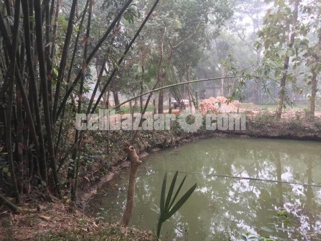 50 bigha land for sale at gazipur - 3/4