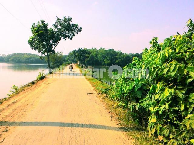 54 Bigah  land for sale at Dhamsouir - 4/5