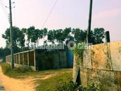 54 Bigah  land for sale at Dhamsouir - Image 5/5