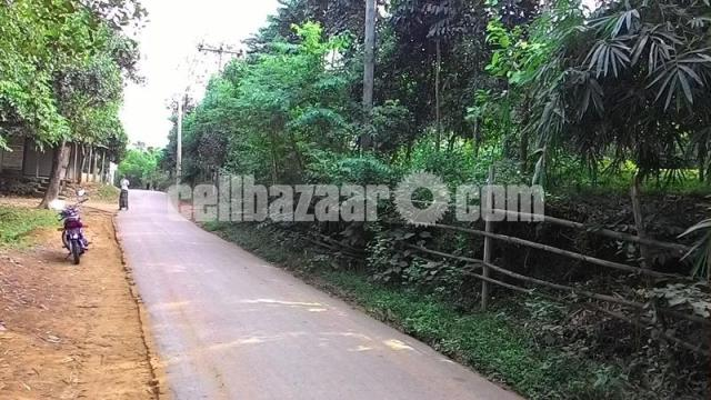 80 bigha land for sale at sreepur gazipur - 3/4