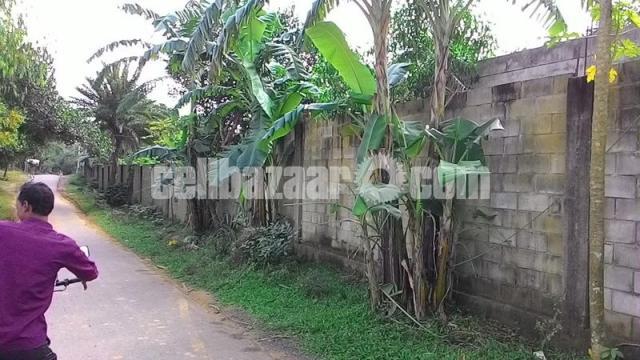 80 bigha land for sale at sreepur gazipur - 4/4