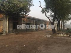 250000sqft factory shed for rent - Image 2/5