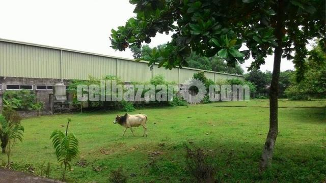 27000sqft shed for rent - 4/5