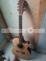 Guitar ( Ruison®) 14 days used With cashmamo