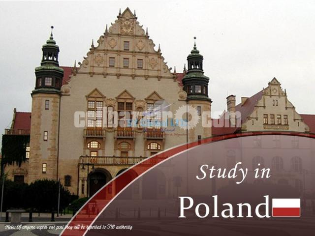 Study in Poland - 1/1
