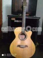 Alisa guitar