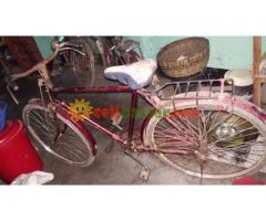 Hercules Fraem Bicycles