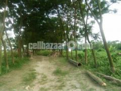 নির্ভেজাল এককমালিকানার ৩,৫ কাঠা প্লট বিক্রয় @ কেরানীগঞ্জ