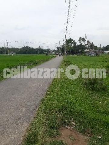 Land for sale (Bogura) - 4/5