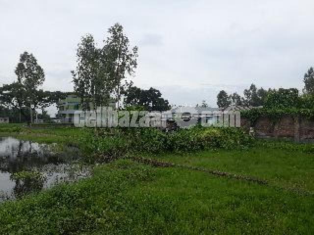 Land for sale (Bogura) - 5/5